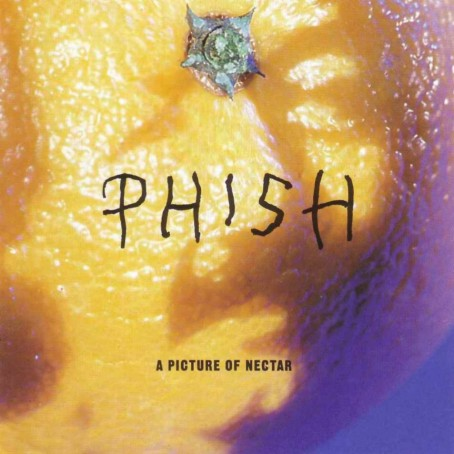 Phish-A_Picture_Of_Nectar-Frontal